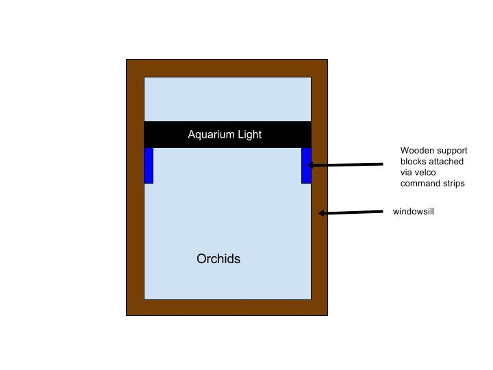 Using Aquarium Hood Lighting?-orchid-setup-jpg