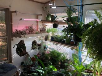 LED Grow light set up and thoughts.-image2-jpg