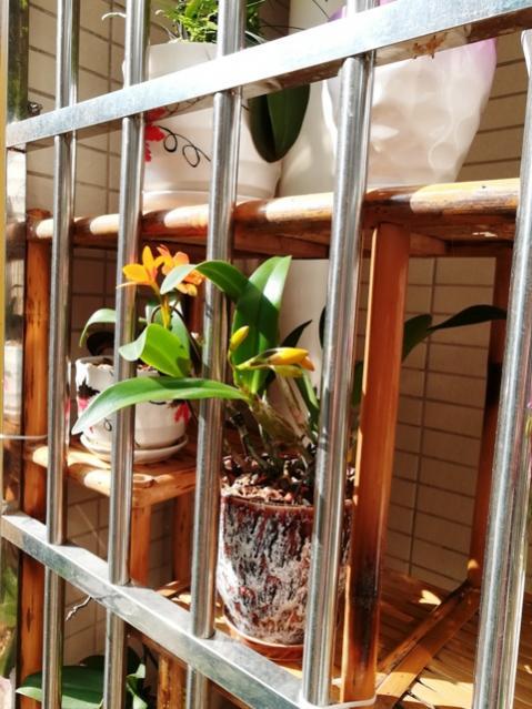 My Zhuhai China custom balcony pics-img_20180206_102235-jpg