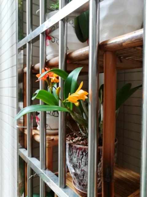 My Zhuhai China custom balcony pics-img_20180209_160608-jpg