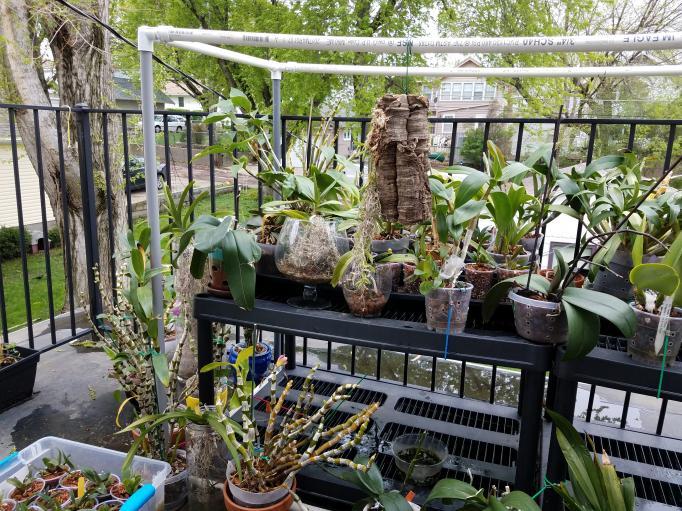 My Spring and Summer setup-20180513_141047-jpg