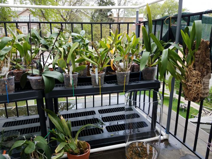 My Spring and Summer setup-20180513_141035-jpg