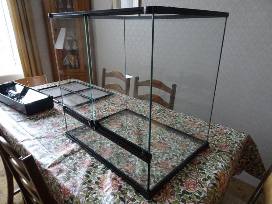 Planning a new terarium-terrarium-setup-1-jpg