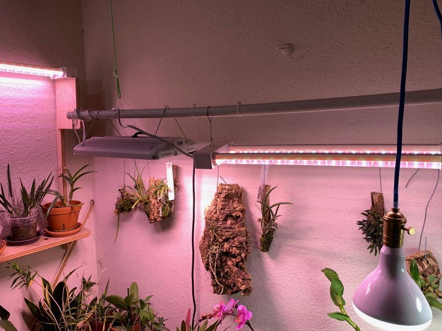 LED Lighting Help for Dummies Please!-img_0485-jpg