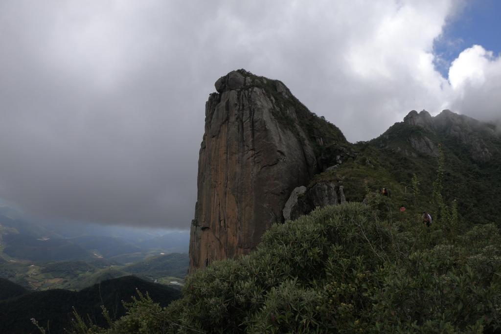 Zygopetalum and rup. Laelia in Rio de Janeiro-landscape2-jpg