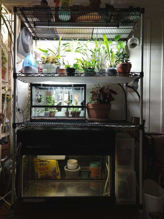 WIP: Fridge terrarium for cool growers-img_20201130_132933091-jpg