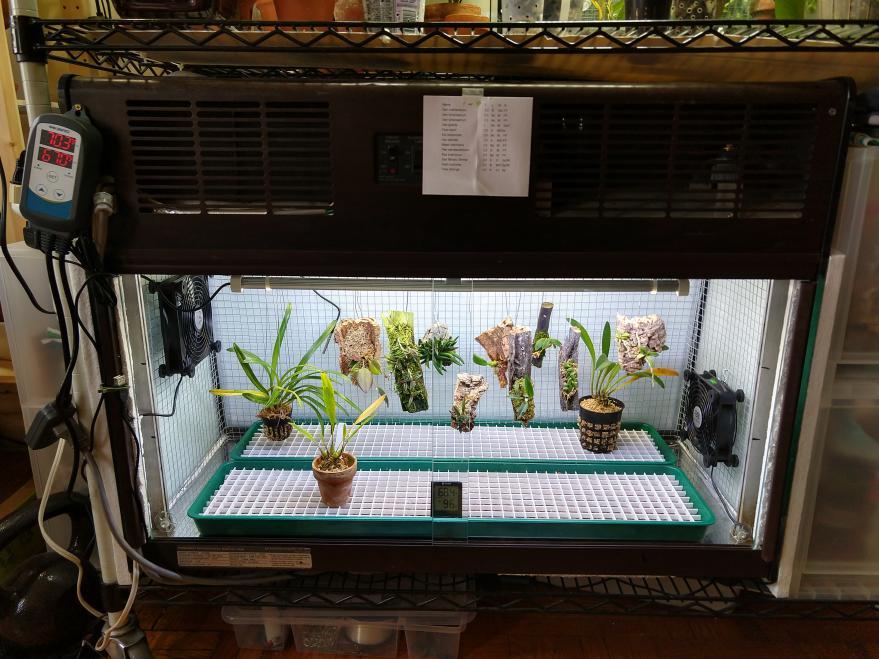 WIP: Fridge terrarium for cool growers-img_20210113_143005857_hdr-jpg