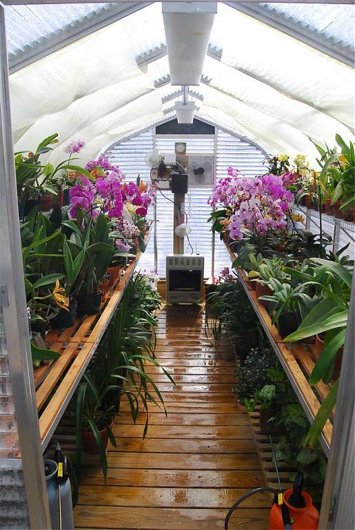 Quality greenhouse kit for extreme weather changes-dsc_0300-jpg