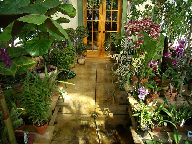 My Growing Area / Greenhouse-frontmiddle1-jpg
