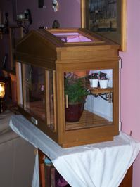 Homebuilt Wardian Case for small special plants-100_1943-jpg