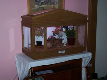 Homebuilt Wardian Case for small special plants-100_2092-jpg