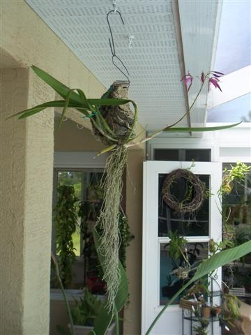 Bl Caribbean Holiday-100_1122-jpg
