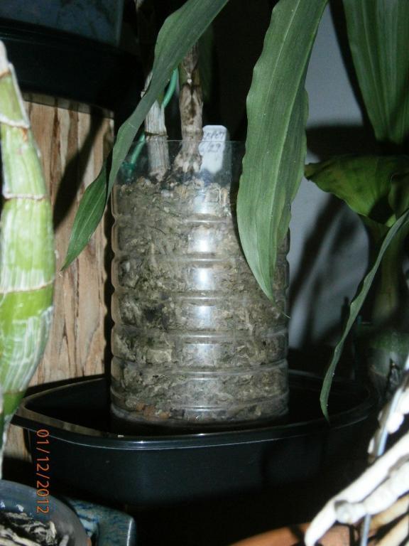 Homemade pots & how to make holes-p1120108-jpg