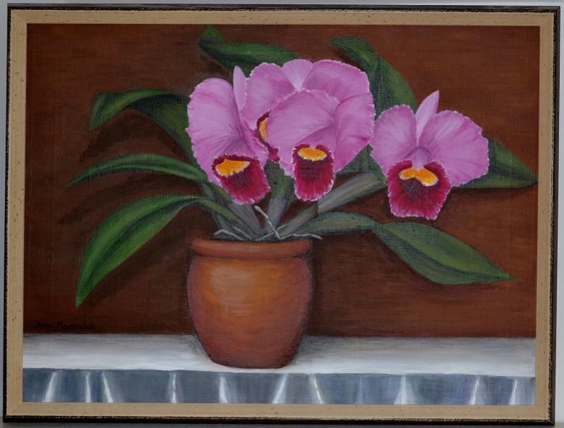 Large flowered Cattleya NOID-noid-painting-jpg