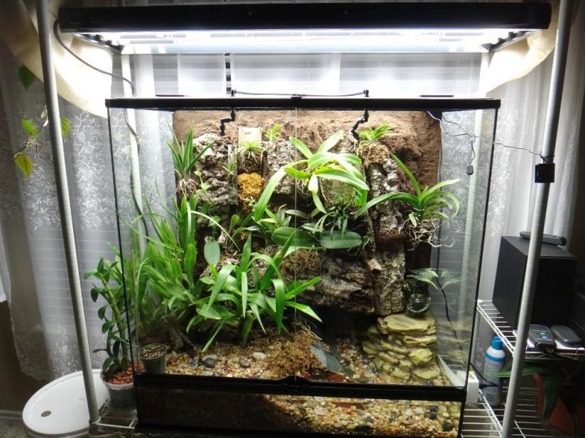Exo Terra terrarium growing-setup-jpg