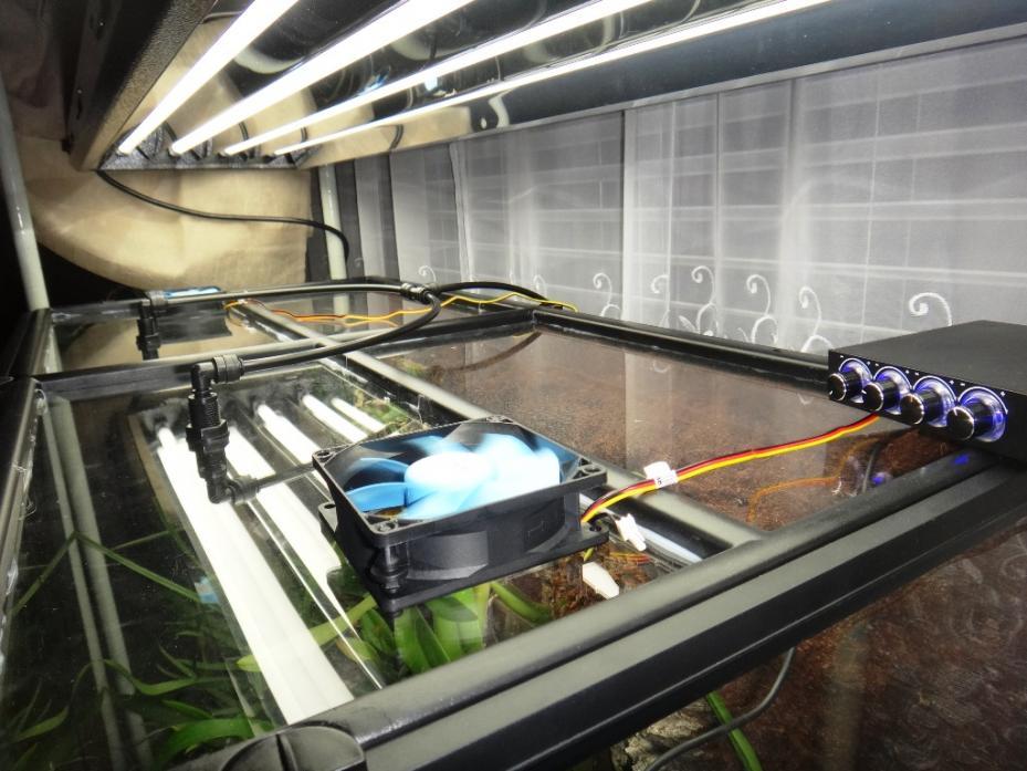 Exo Terra terrarium growing-top-jpg