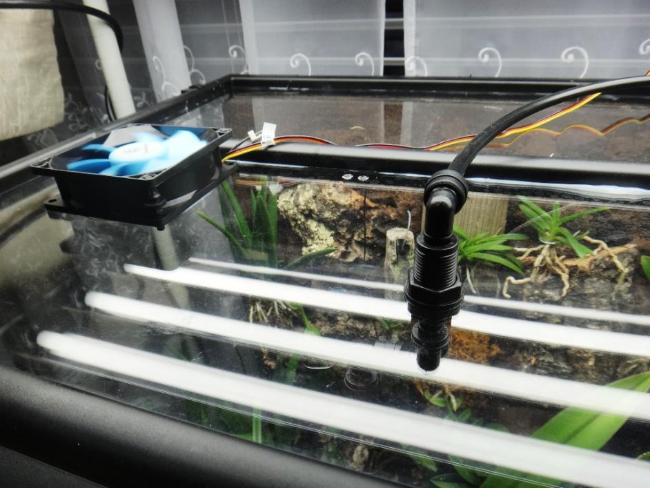 Exo Terra terrarium growing-top-closeup-jpg