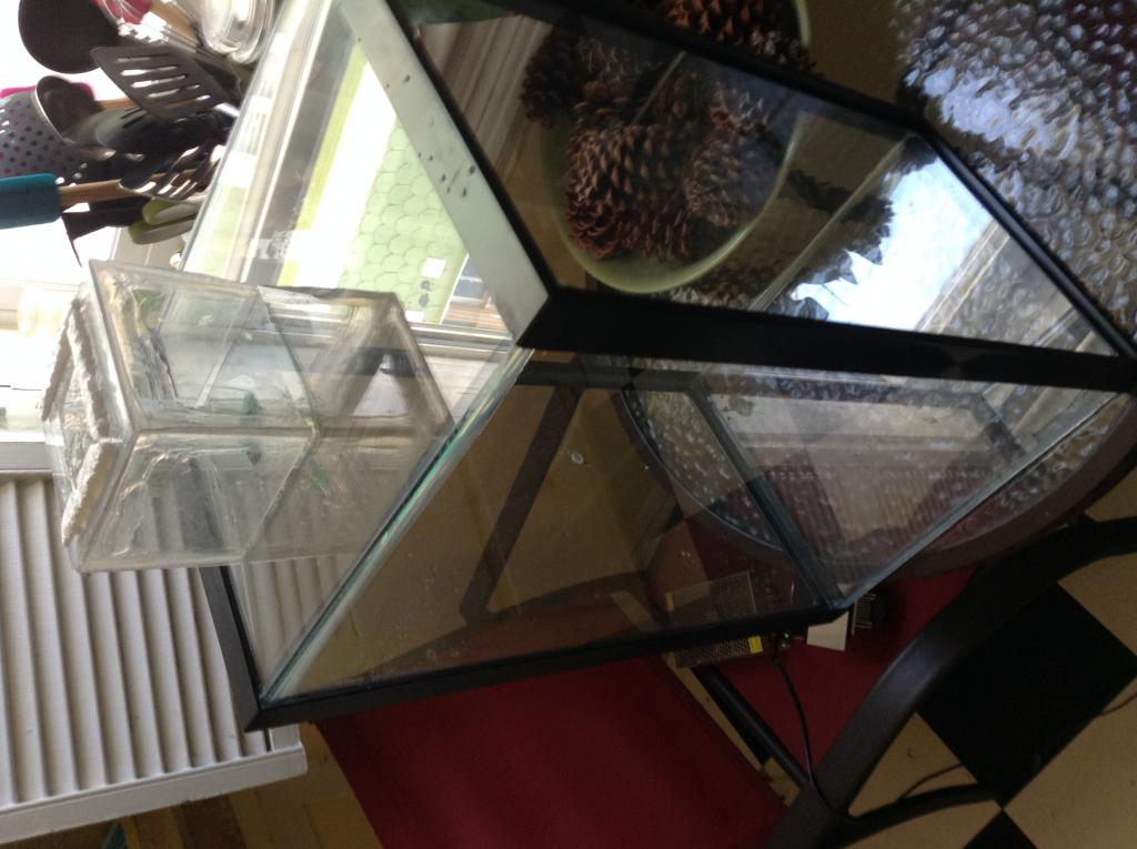 Vivarium for cool growing orchids..in progress.. Literally cool...(build)-photo-2-5-jpg