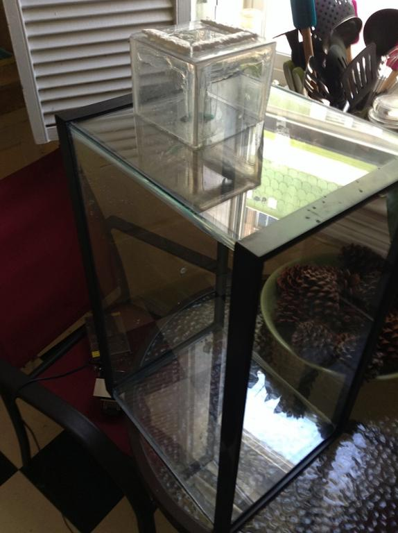 Vivarium for cool growing orchids..in progress.. Literally cool...(build)-utf-8img_0225-jpg
