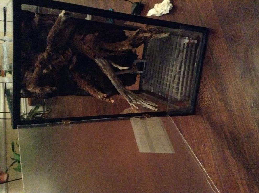 Vivarium for cool growing orchids..in progress.. Literally cool...(build)-photo-2-3-jpg