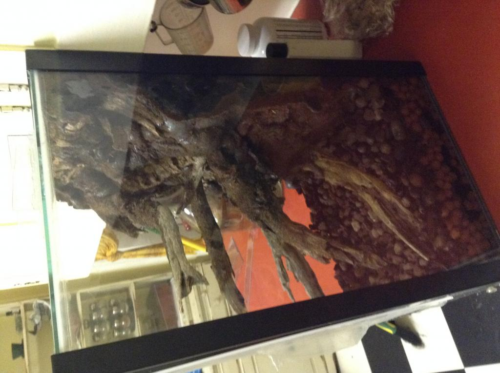 Vivarium for cool growing orchids..in progress.. Literally cool...(build)-photo-4-2-jpg