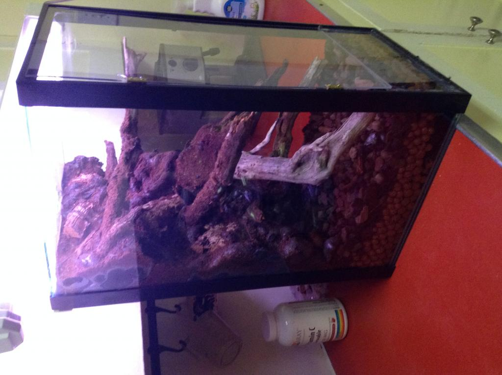 Vivarium for cool growing orchids..in progress.. Literally cool...(build)-photo-5-2-jpg