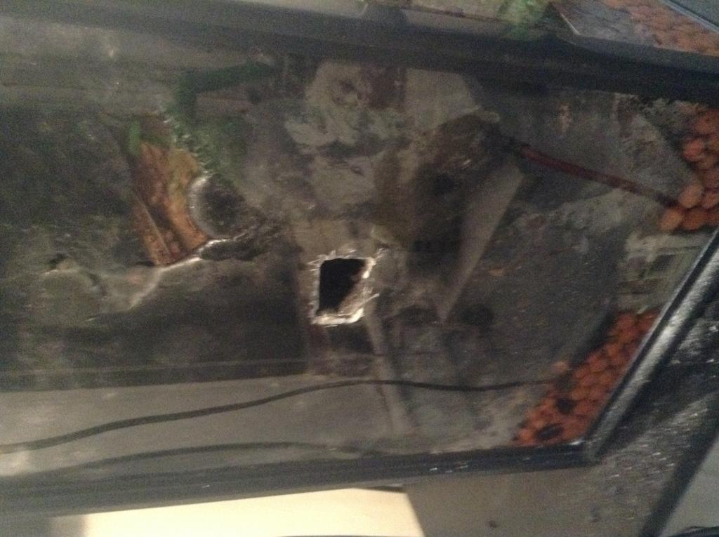 Vivarium for cool growing orchids..in progress.. Literally cool...(build)-photo-3-jpg