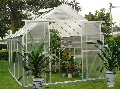 Greenhouse for Orchid Growing Year Round