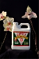 Hormex Rooting Hormone Concentrate